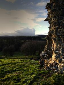kilpeck-castle2b